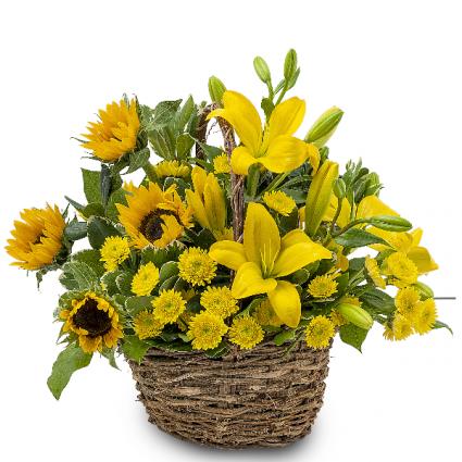 Basket of Sunshine Basket