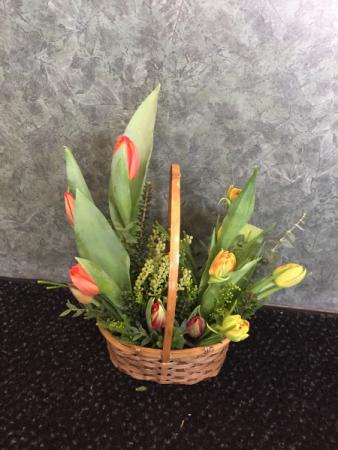 Basket of Tulips Arrangement