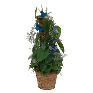 BASKET WITH BUTTERFLIES green plant