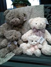 Baxter Bears Assorted Plush Plush Add-on