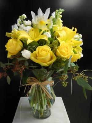 Latina Liliana EN-16 in Teaneck, NJ | ENCKE FLOWERS