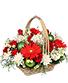 CAPTIVATING CHRISTMAS Holiday Flowers