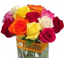 BE MINE 5'' x 5'' SQUARE VASE OF SHORT STEM ROSES MIXED COLORS