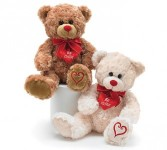 Be Mine  Bear* Plush Gift