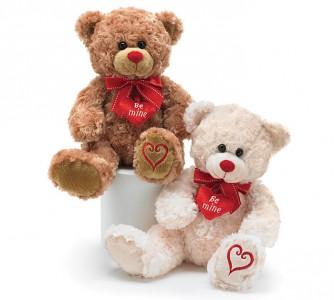 Be Mine Plush Bear