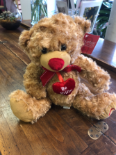 """Be Mine Teddy"" Stuffed Animal"