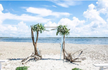 Beach Arbor Swags Ceremony Flowers
