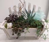 Beach Chair Succulent Garden