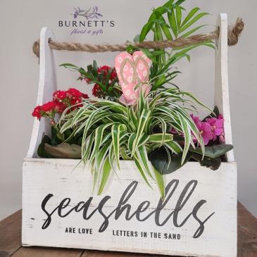 Beach Days Box Planter