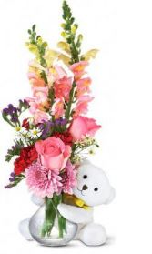 Bear Hug Arrangement Fresh Flower Arrangement