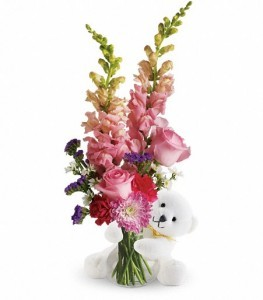 Bear Hug with Pink Roses TF19-2