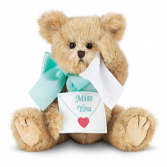 Beary Blue Without You Gift