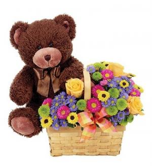 Beary Happy Day  in Arlington, TX   Erinn's Creations Florist