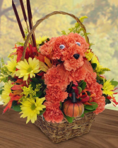 Beary Orange Arrangement