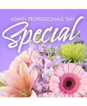 Beautiful Admin Special Designer's Choice in Belleview, FL | BELLEVIEW FLORIST, INC.