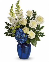 Beautiful and Blue Fresh Flowers