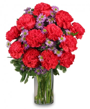 Beautiful arrangement with Red Carnations