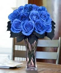Local Delivery -Blue roses vased 6-12-or 18 roses