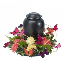 Beautiful Butterfly Simple Surround Urn