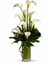 Beautiful calla Fresh Arrangement