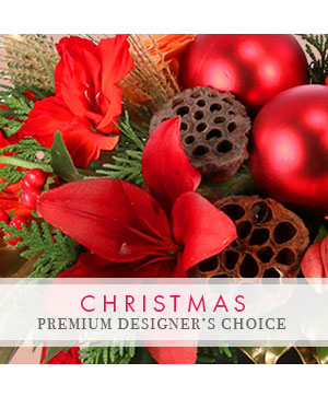 Beautiful Christmas Florals Premium Designer's Choice in Plainview, TX | Kan Del's Floral, Candles & Gifts