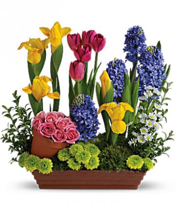 Beautiful  Garden Arrangement