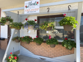 Beautiful Hanging Baskets Outdoor in Osage, Iowa | Osage Floral & Gifts