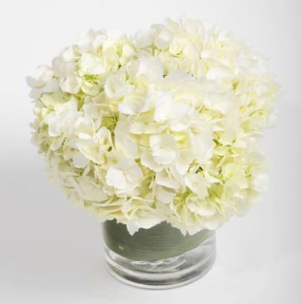 Beautiful silk Hydrangeas Gift