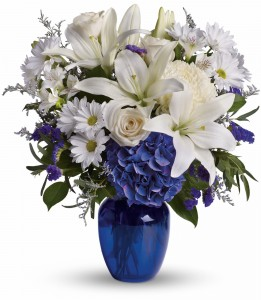 Beautiful in Blue DX T209-3B