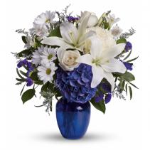 Beautiful In Blue EF90