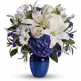 Beautiful in Blue - T209-3A