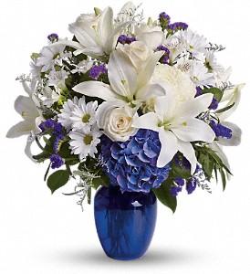 Beautiful in Blue Vase