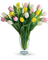 Beautiful Mixed Tulips  Vase Arrangement