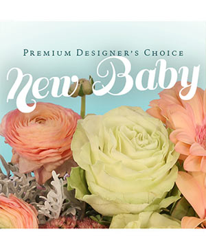 Beautiful New Baby Flowers Premium Designer's Choice in Darien, CT | DARIEN FLOWERS