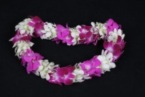 Beautiful Orchid Lei Orchid Lei