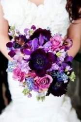 Beautiful Rich Colours For both the Bride and her girls