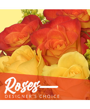 Beautiful Roses Designer's Choice in Oxnard, CA | Mom and Pop Flower Shop