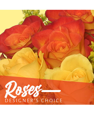 Beautiful Roses Designer's Choice