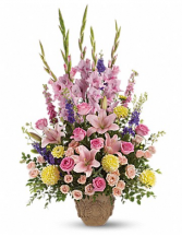 Beauty Beyond Sympathy Arrangement