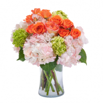 The Willoughby Beauty in Blossom Arrangement
