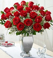 beauty in silver 2 dz red roses