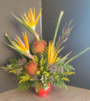 Beauty of paradise   in Regina, SK | Regina Florist