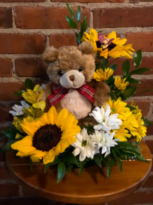 Bee Beary Well Get Well Soon in Albany, GA | WAY'S HOUSE OF FLOWERS