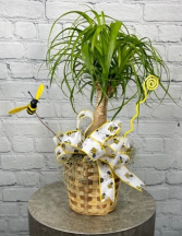 """""""Bee Well"""" Plant"""