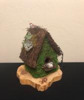 Bella Bird House Succulent Bird House