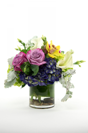 Bellissima Round BQT in Falls Church, VA | Geno's Flowers