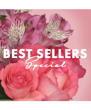 Best of the Best Special Designer's Choice