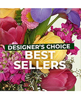Best Sellers Favorite Designer's Choice