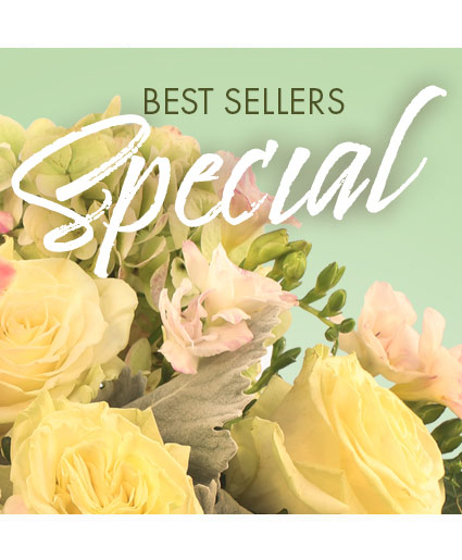 Best Sellers Special Designer's Choice