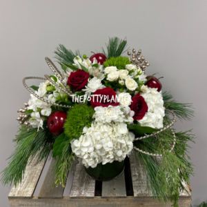 Best Time Of The Year  in Etobicoke, ON | THE POTTY PLANTER FLORIST